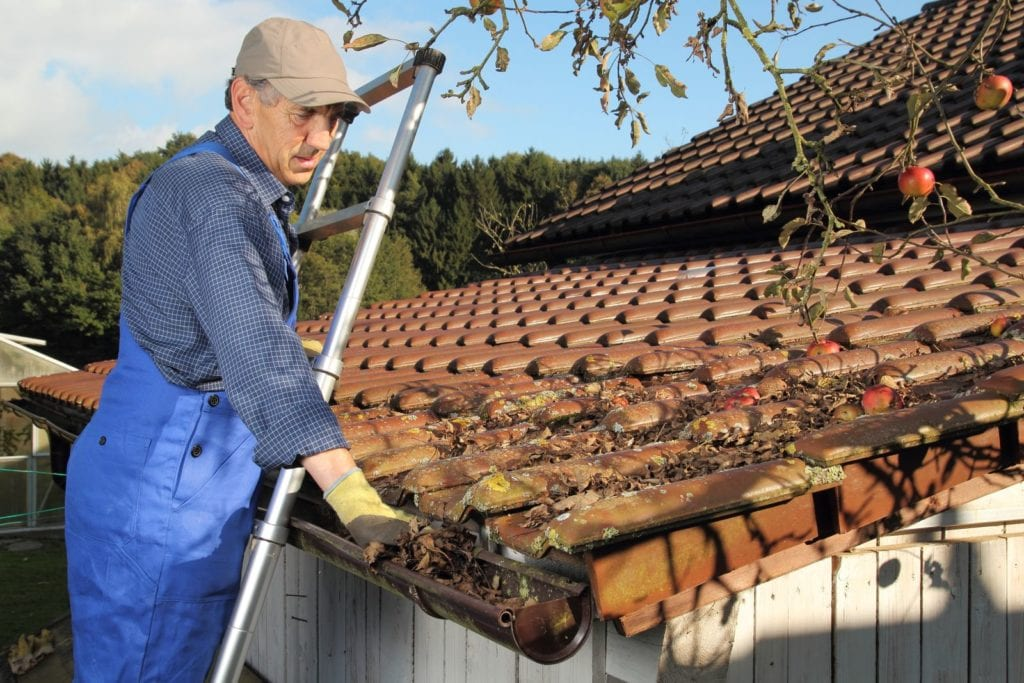 Gutter-Cleaning-1024x683
