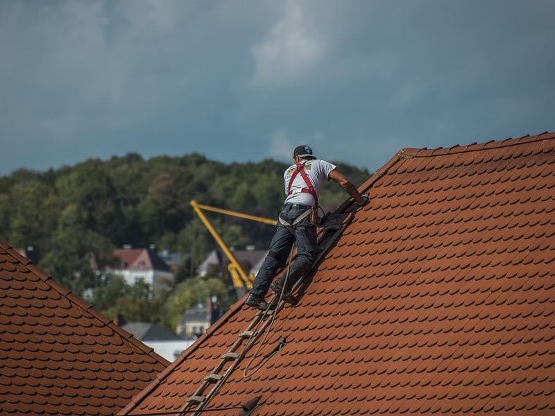 Man on top of roof with ladder