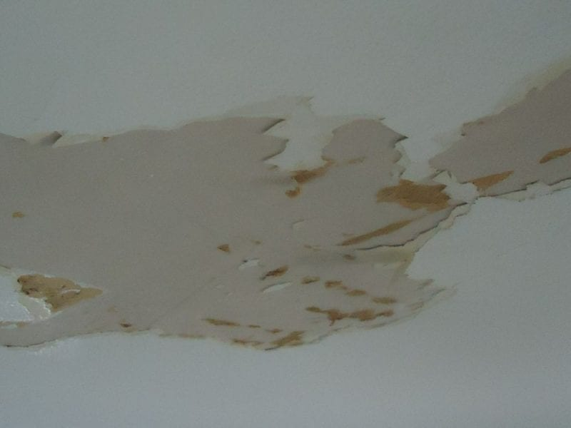 Water damage to ceiling causing the paint to peel