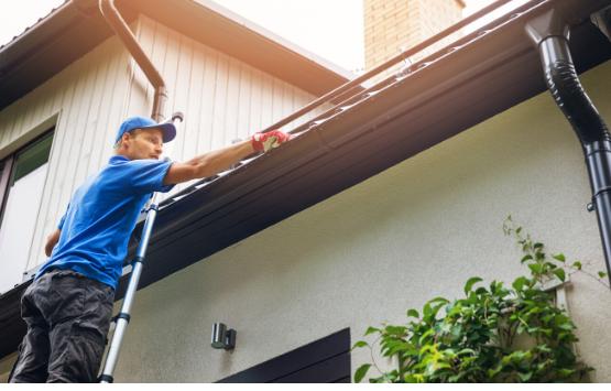 Roof Repair. Self-Diagnosis